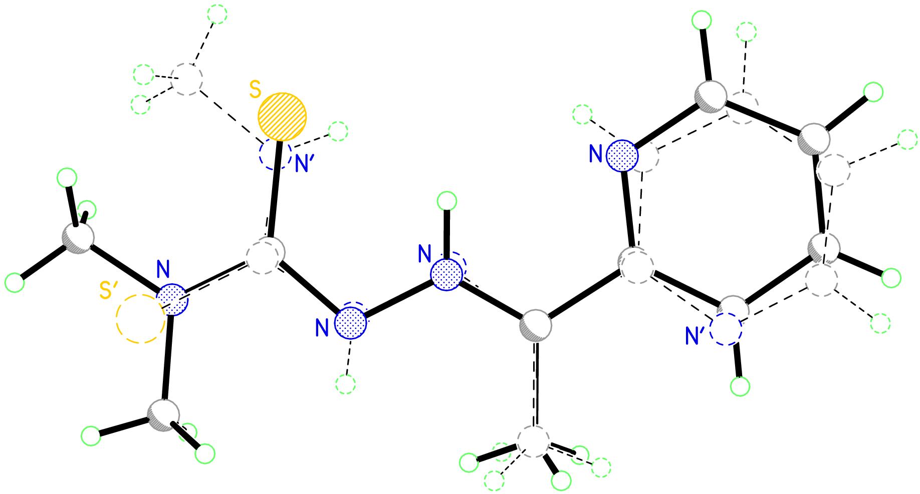 Thiosemicarbazones chemical synthesis of ciprofloxacin